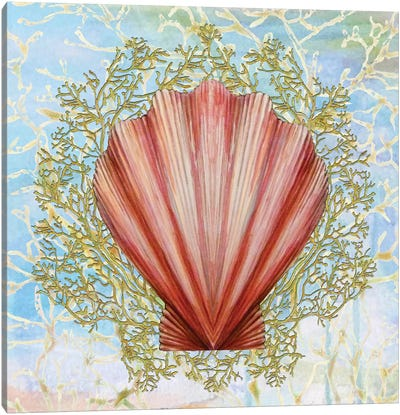 Shell Medley I Canvas Art Print