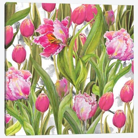 Tulip Symphony I Canvas Print #DIN26} by Diannart Canvas Artwork
