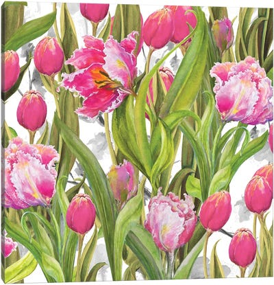 Tulip Symphony I Canvas Art Print