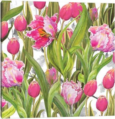 Tulip Symphony I Canvas Art Print