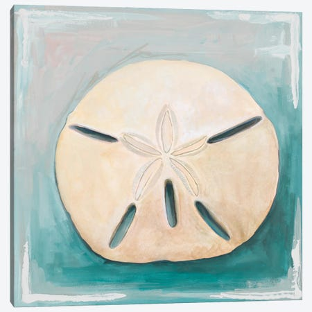 Sand Dollar on Teal Canvas Print #DIN50} by Diannart Canvas Artwork