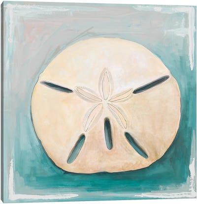 Sand Dollar on Teal Canvas Art Print