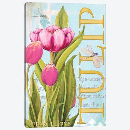 Elegant Tulip II Canvas Print #DIN6} by Diannart Canvas Art