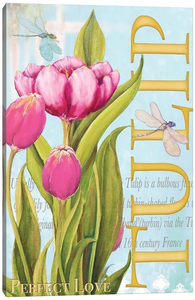 Elegant Tulip II Canvas Art Print