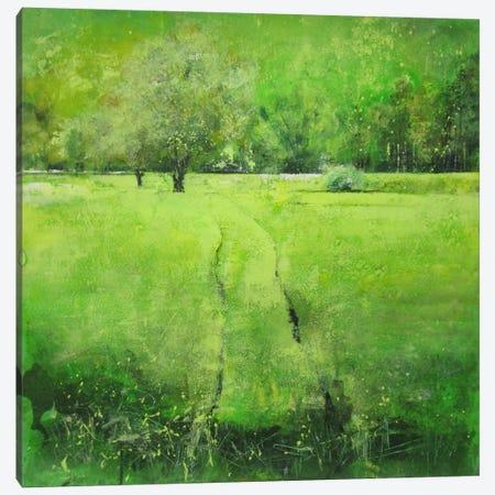 Stagioni V Canvas Print #DIO11} by Claudio Missagia Canvas Print