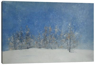 Stagioni VII Canvas Art Print