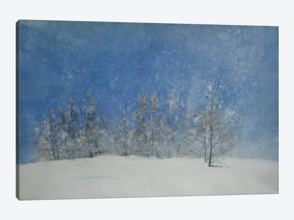 Stagioni VII by Claudio Missagia 1-piece Canvas Artwork