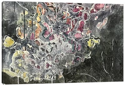 Tracce II Canvas Art Print
