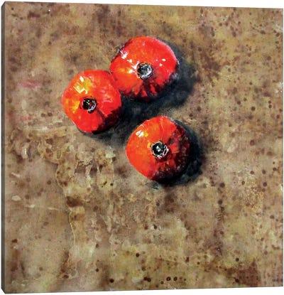 Composizione XXIX Canvas Art Print