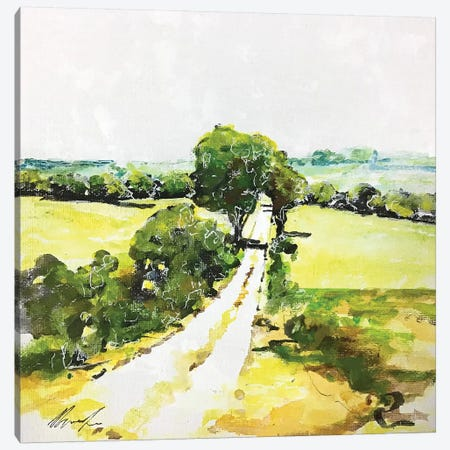 Da Qualche Parte I Canvas Print #DIO58} by Claudio Missagia Canvas Art Print