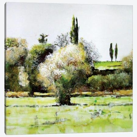Da Qualche Parte IX Canvas Print #DIO66} by Claudio Missagia Canvas Art Print