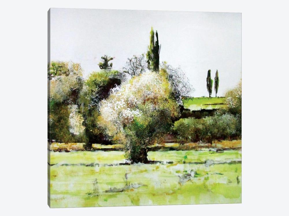 Da Qualche Parte IX by Claudio Missagia 1-piece Canvas Artwork