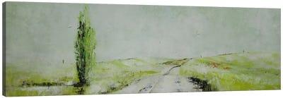 Stagioni II Canvas Print #DIO8