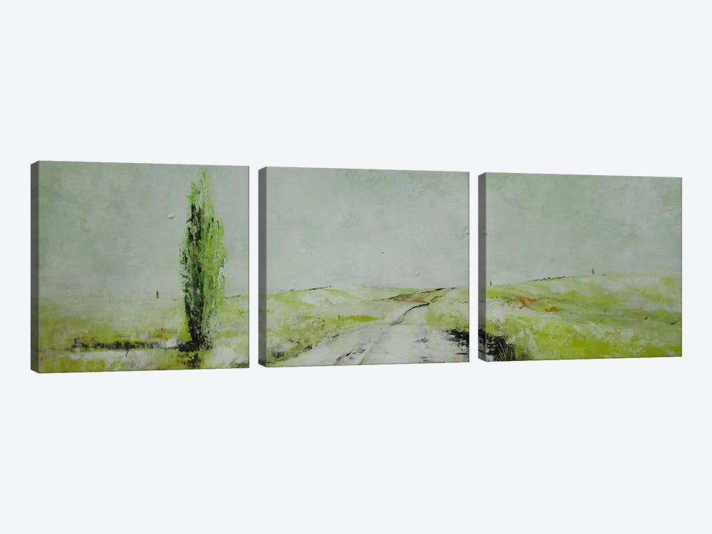 Stagioni II by Claudio Missagia 3-piece Canvas Art