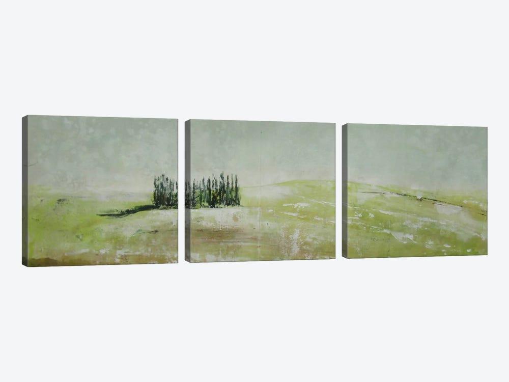 Stagioni III by Claudio Missagia 3-piece Canvas Art Print