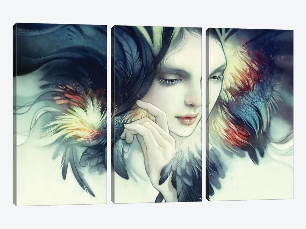 Tavuk by Anna Dittmann 3-piece Canvas Art Print