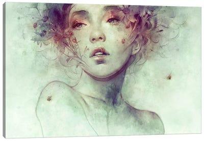 Swarm Canvas Art Print