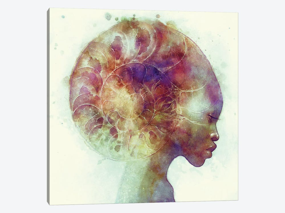 Ammon by Anna Dittmann 1-piece Canvas Print