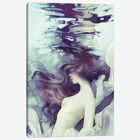 Drift Canvas Print #DIT6} by Anna Dittmann Canvas Print