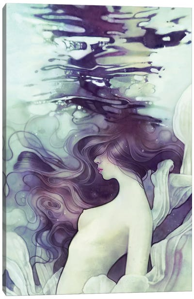 Drift Canvas Art Print