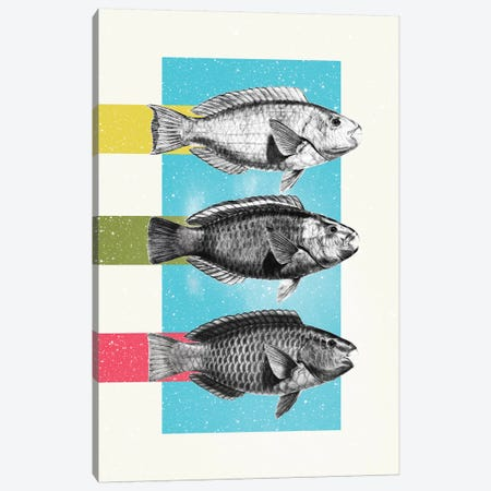 Fish Canvas Print #DIV15} by Danny Ivan Canvas Print