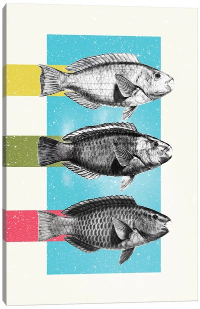 Fish Canvas Art Print