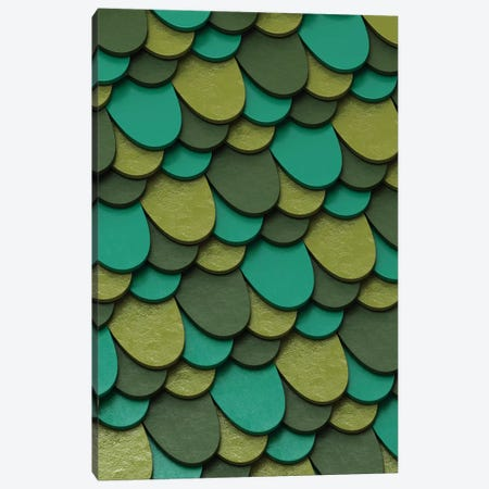 Green Scales Canvas Print #DIV19} by Danny Ivan Canvas Wall Art