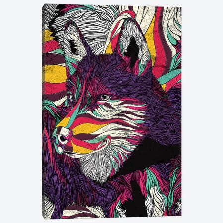 Color Husky Canvas Print #DIV2} by Danny Ivan Canvas Wall Art