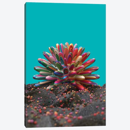 Coral Canvas Print #DIV3} by Danny Ivan Canvas Wall Art