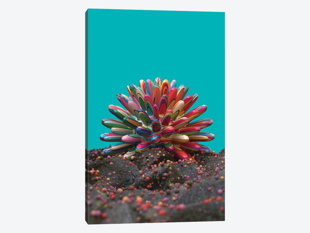 Coral by Danny Ivan 1-piece Canvas Artwork