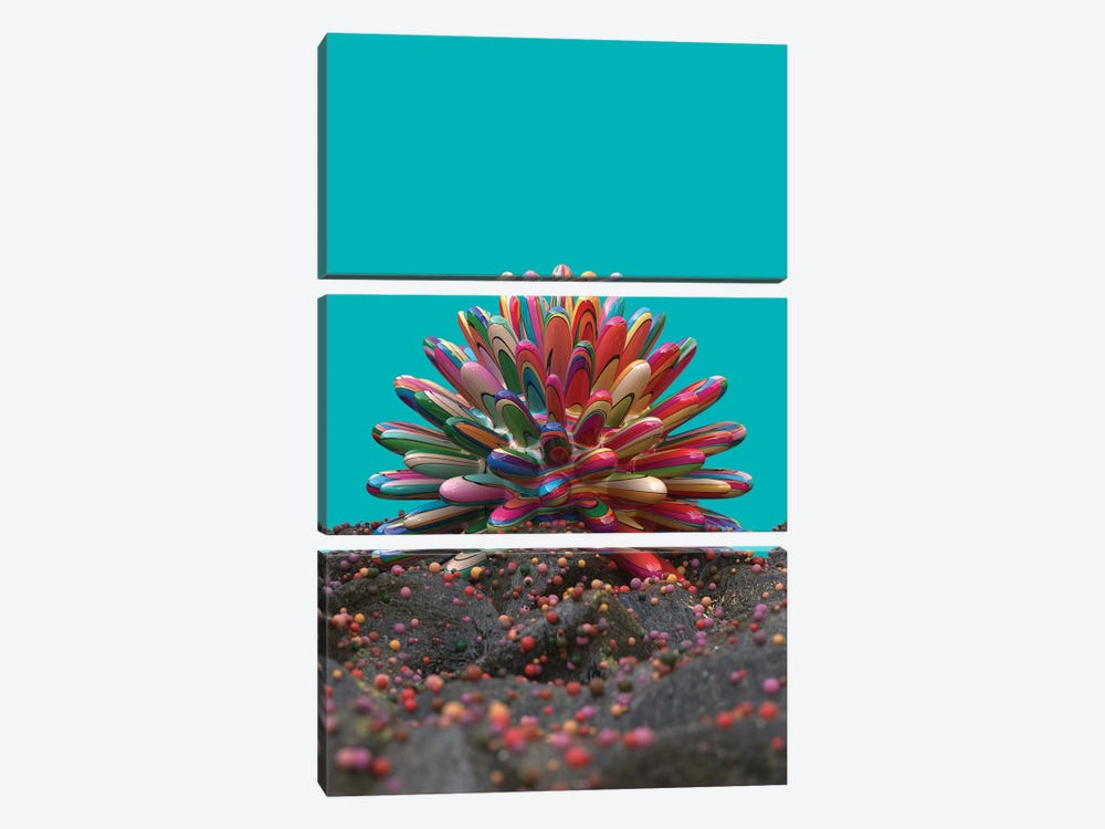 Coral by Danny Ivan 3-piece Canvas Art