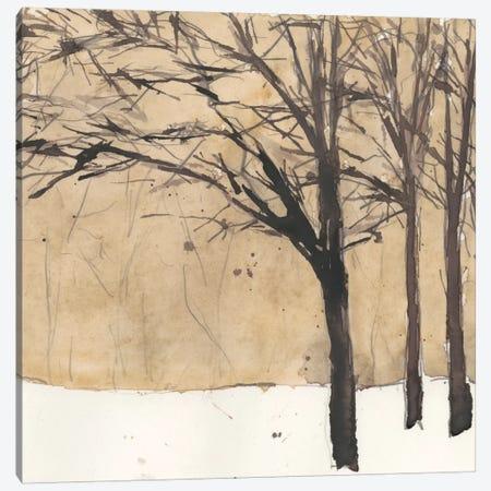 Forest Sketch II Canvas Print #DIX11} by Samuel Dixon Canvas Art