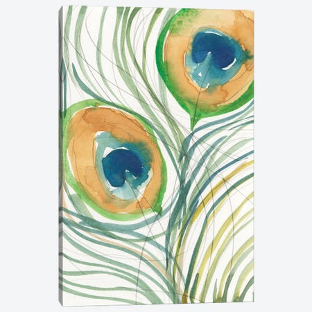 Peacock Abstract I Canvas Print #DIX124} by Samuel Dixon Canvas Artwork