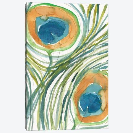 Peacock Abstract II Canvas Print #DIX125} by Samuel Dixon Canvas Artwork