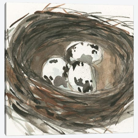 Nesting Eggs I Canvas Print #DIX138} by Samuel Dixon Canvas Art