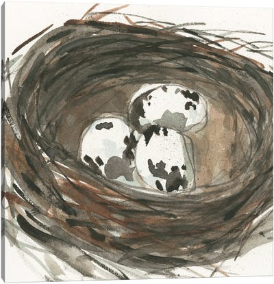 Nesting Eggs I Canvas Art Print