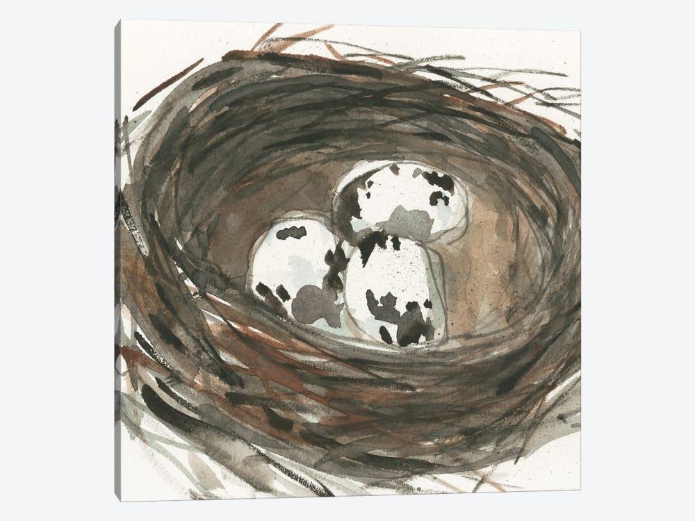 Nesting Eggs I by Samuel Dixon 1-piece Art Print