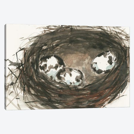 Nesting Eggs II Canvas Print #DIX139} by Samuel Dixon Canvas Wall Art