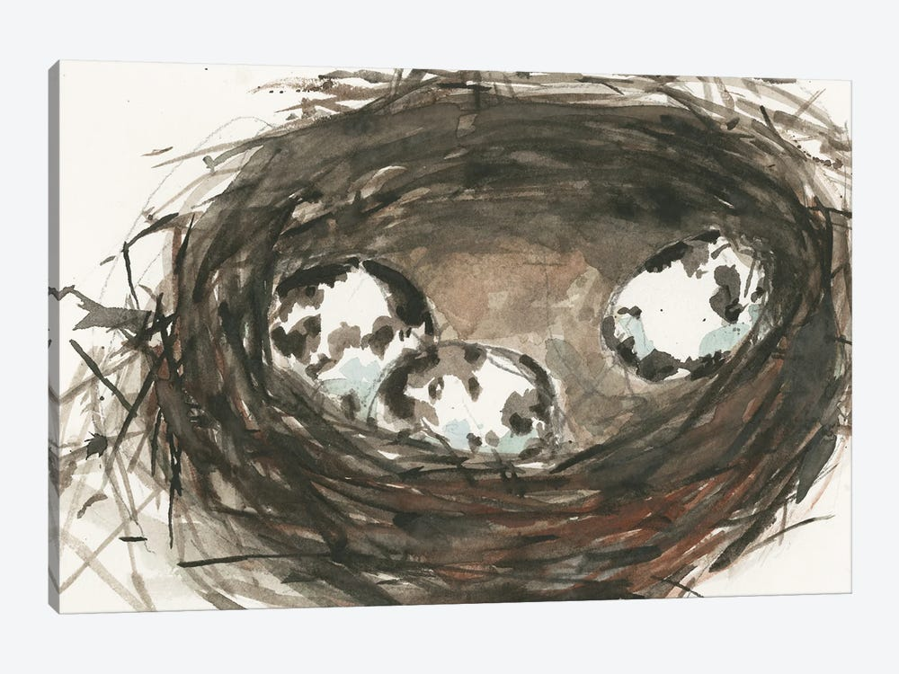 Nesting Eggs II by Samuel Dixon 1-piece Canvas Artwork