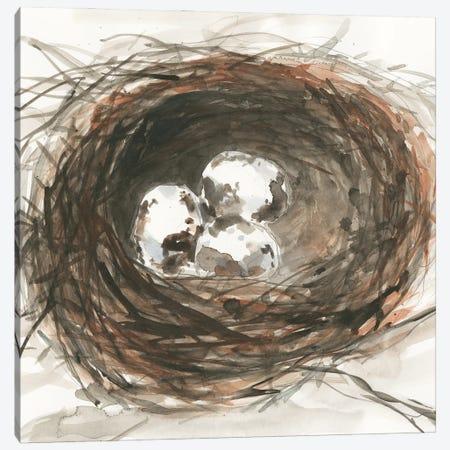 Nesting Eggs III Canvas Print #DIX140} by Samuel Dixon Canvas Art Print