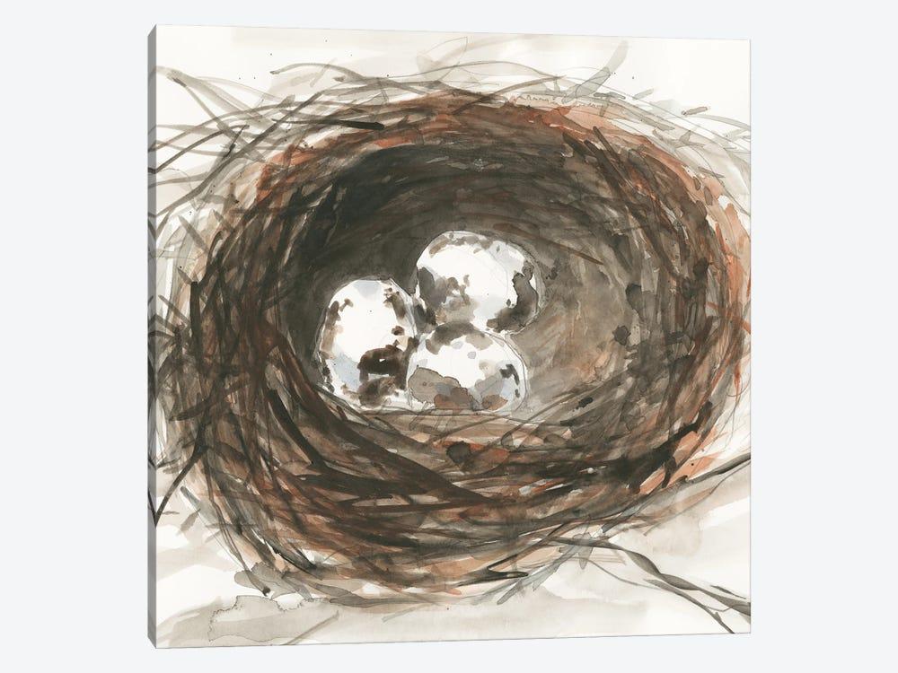 Nesting Eggs III by Samuel Dixon 1-piece Canvas Wall Art