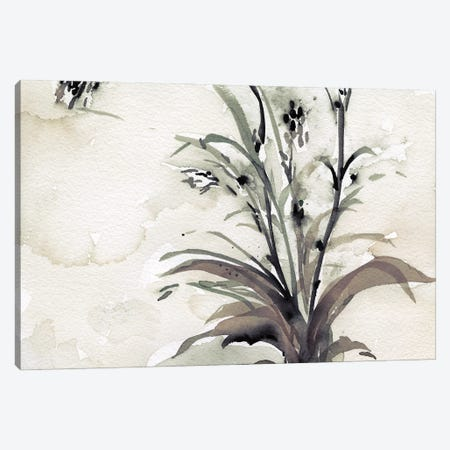 Plant of the Age I Canvas Print #DIX159} by Samuel Dixon Canvas Wall Art