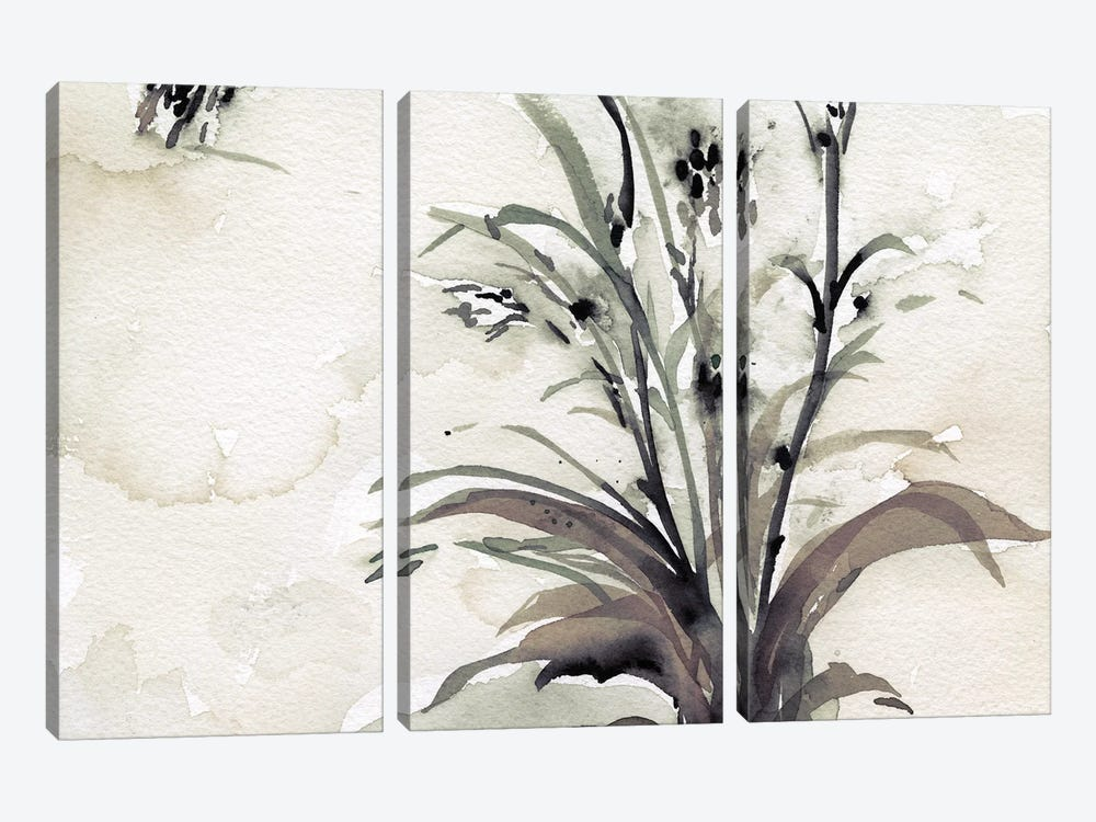 Plant of the Age I by Samuel Dixon 3-piece Canvas Art