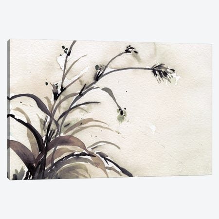 Plant of the Age II Canvas Print #DIX160} by Samuel Dixon Art Print