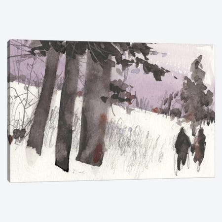 Woodland Sketch II Canvas Print #DIX20} by Samuel Dixon Canvas Art Print