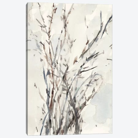 Watercolor Branches I Canvas Print #DIX31} by Samuel Dixon Canvas Wall Art
