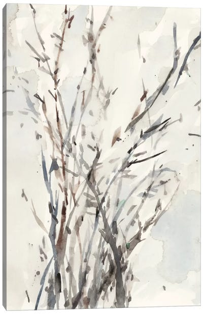 Watercolor Branches I Canvas Art Print