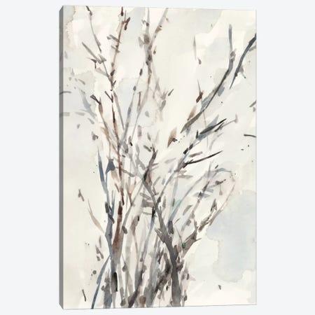 Watercolor Branches I Canvas Print #DIX31} by Samuel Dixon Canvas Wall Art