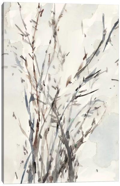 Watercolor Branches I Canvas Art Print