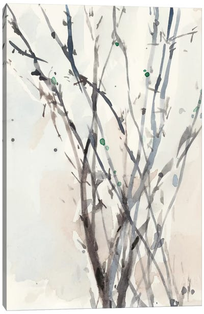 Watercolor Branches II Canvas Art Print